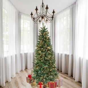 7 Green Douglas Fir Artificial Christmas Tree With 300 Clear Lights