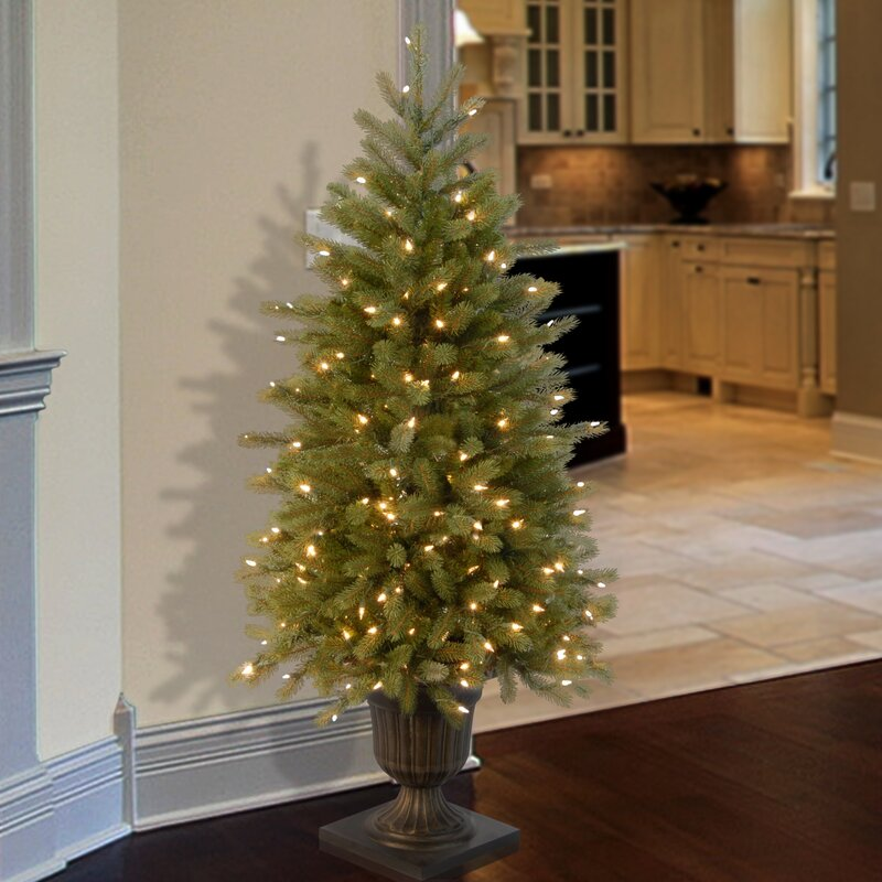 National Tree Co. Jersey Fraser Fir 4' Green Entrance Artificial ...