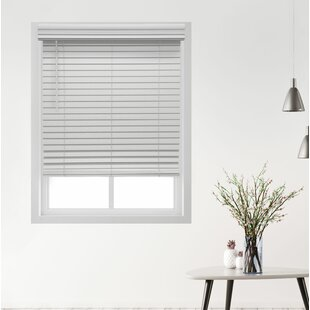 hanging mini blinds vinyl windows