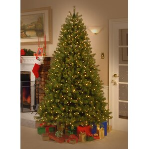 feel real down swept 75 hinged green fir artificial christmas tree and 750 - Christmas Tree Lights Led