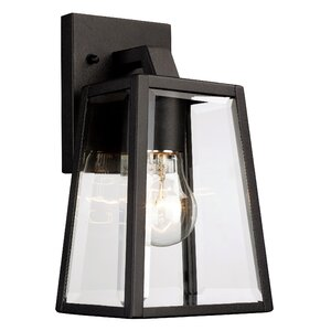Sowders 1-Light Outdoor Wall Lantern