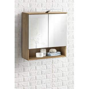 Stourport-on-Severn 65 x 79cm Mirrored Wall Mounted Cabinet by Metro Lane