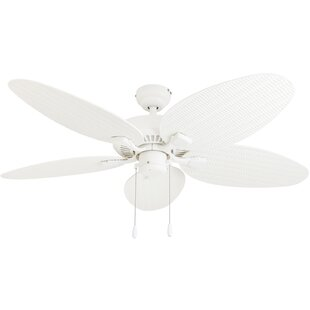 Ceiling fans sale youll love wayfair 52 kalea 5 blade outdoor ceiling fan aloadofball Image collections