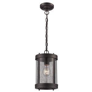 Holly Hills 1-Light Outdoor Hanging Lantern