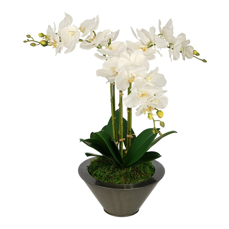 House Of Silk Flowers Artificial Triple Stem Orchid In Round Zinc