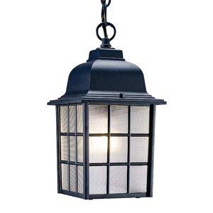 Belfield 1-Light Outdoor Hanging Lantern