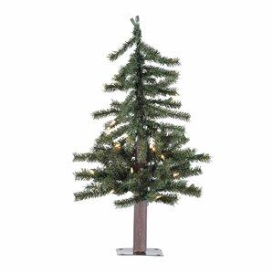 httpssecureimg2 fgwfcdncomim49375403resiz - Natural Christmas Tree