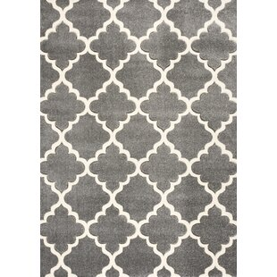 Harr Hand Knotted Light Grey Rug by Wrought Studio