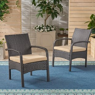 fc455349625 Grissett Patio Chair with Cushion (Set of 2)