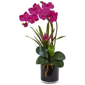 Silk Orchid and Bromeliad Mixed Floral Arrangement in Planter