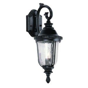 Hayden 1-Light Outdoor Wall Lantern