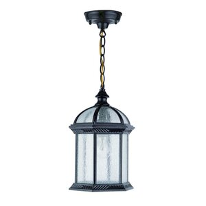 Hausmann 1-Light Outdoor Hanging Lantern