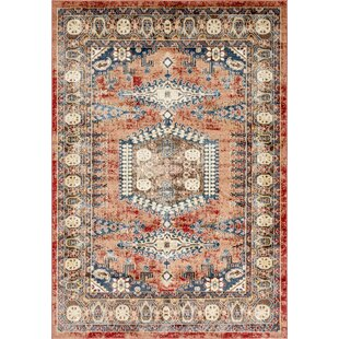 outlet store 73a7a 35d54 Nathanson Terracotta Area Rug