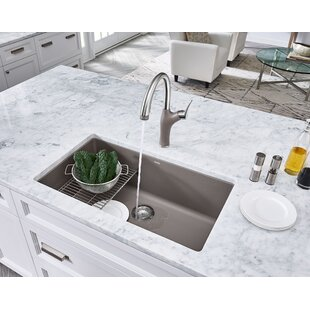 Ledge Sink | Wayfair on home depot undermount sinks, inset kitchen sinks, stone sinks, american standard kitchen sinks, kohler kitchen sinks, elkay sinks, black kitchen sinks, stainless steel kitchen sinks, overmount kitchen sinks, undermount sinks 60 40, smart divide kitchen sinks, farm kitchen sinks, antique kitchen sinks, swanstone kitchen sinks, single bowl kitchen sinks, solid surface kitchen sinks, lowes kitchen sinks, ceramic kitchen sinks, farmhouse kitchen sinks, granite kitchen sinks,