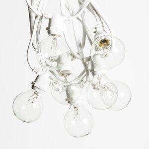 40-Light Globe String Lights