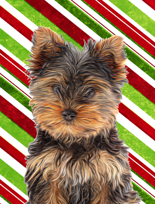 Carolineu0027s Treasures Candy Cane Holiday Christmas Yorkie Puppy/Yorkshire  Terrier 2 Sided Garden Flag | Wayfair