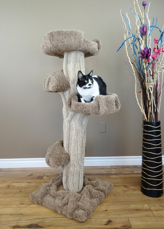 New Cat Condos 51 Quot Premier Cat Tree Amp Reviews Wayfair