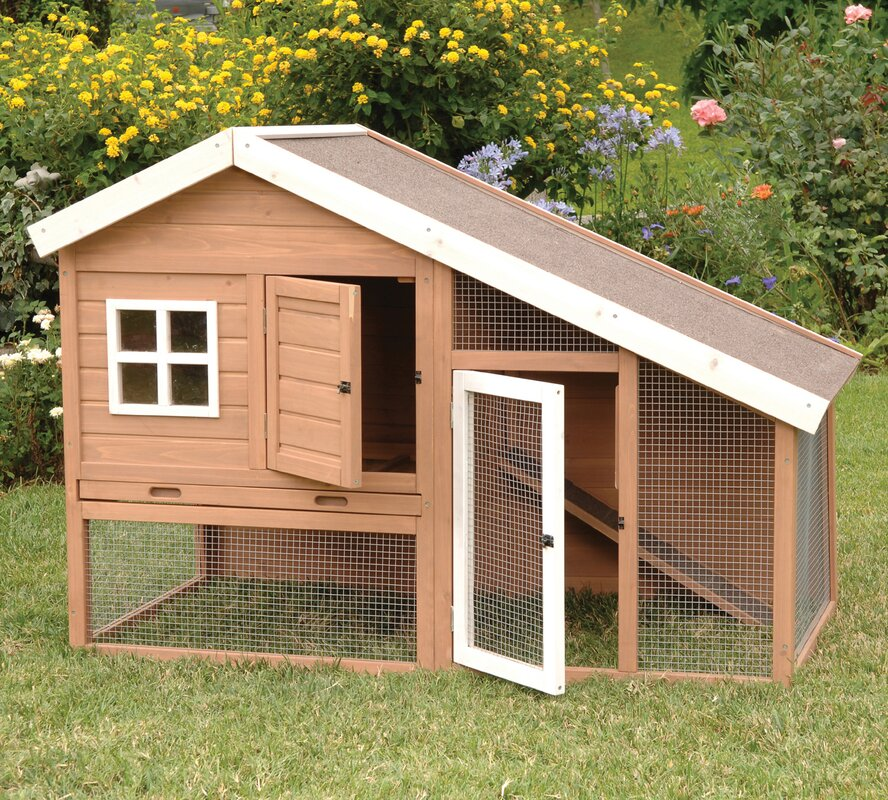 Precision Pet Cape Cod Chicken Coop & Reviews