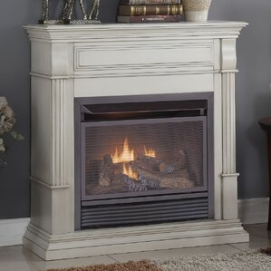 Dual Fuel Ventless Natural Gas / Propane Fireplace by Duluth Forge