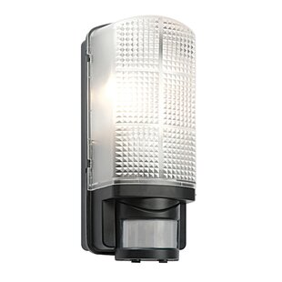 Outdoor lighting motion sensor wayfair save aloadofball Gallery