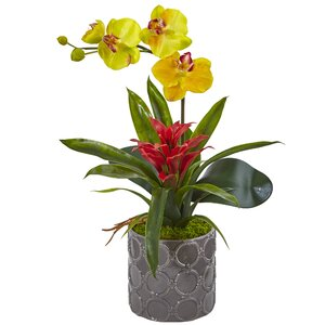 Silk Mini Phalaenopsis Orchid and Bromeliad Floral Arrangement in Planter