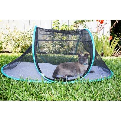 Cat Cages Amp Playpens