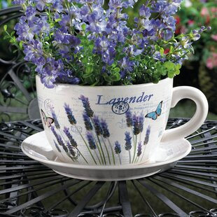 Flower Pot With Saucer Wayfair