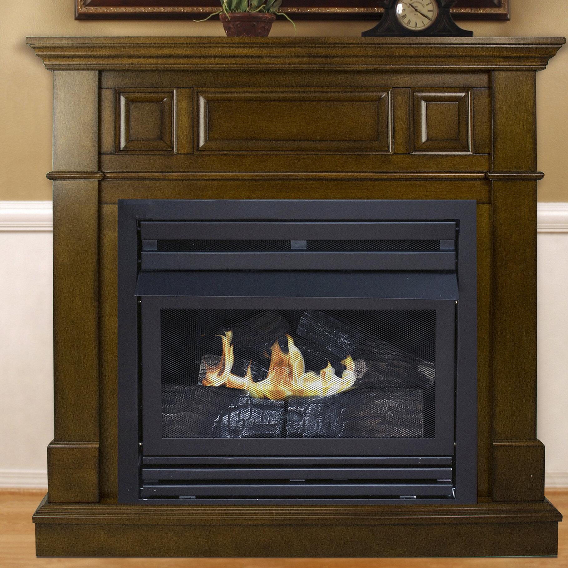 Darby Home Co Shelba Vent Free Propane Fireplace Wayfair