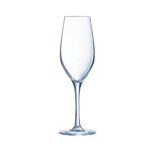 89afc1b725cd Champagne Glasses & Flutes