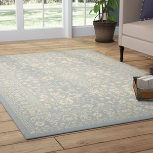 Apollo Light Blue Outdoor Area Rug & Light Blue Outdoor Rug | Wayfair