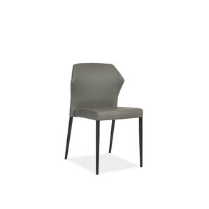Espana Side Chair (Set of 2) by Brayden Studio