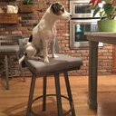Brayden Studio Penton 26 75 Quot Swivel Bar Stool Amp Reviews