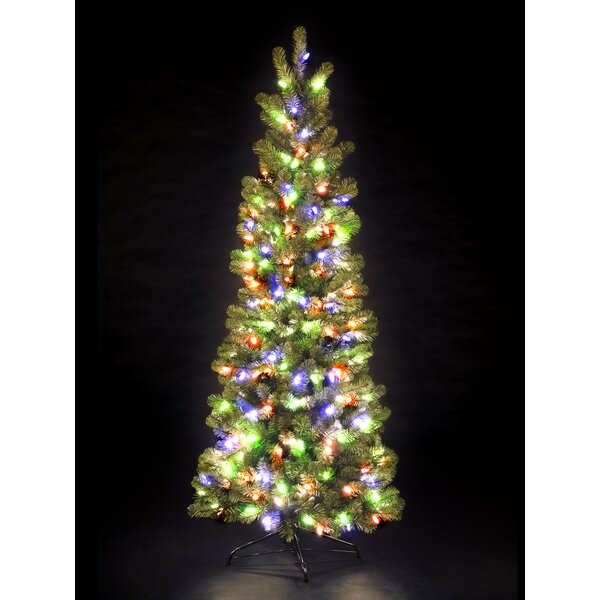 hometime snowtime 7 green pre lit pencil pine artificial christmas tree with 300 color lights wayfair - Pre Lit Pencil Christmas Tree