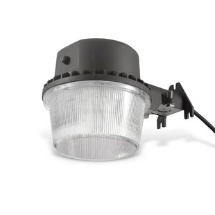 Reginald Dusk To Dawn Led Outdoor Barn Light