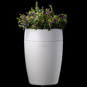 Affordable Luxury Line Sprout Aroma Diffuser