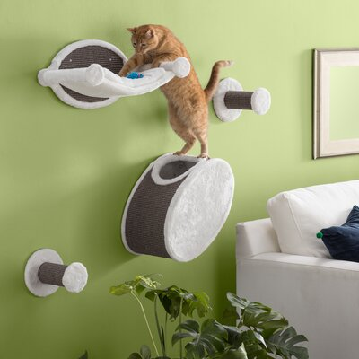 Cat Shelves Amp Perches You Ll Love In 2019 Wayfair