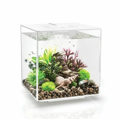 "Led Aquarium Tank Biorb Size: 13.6"" H X 12.6"" W X 12.6"" D, Color: White"