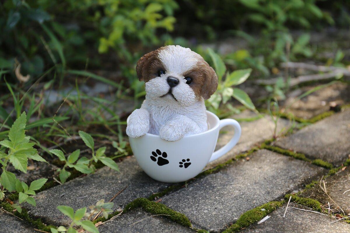 Hi-Line Gift Ltd. Teacup Shih Tzu Puppy Statue & Reviews