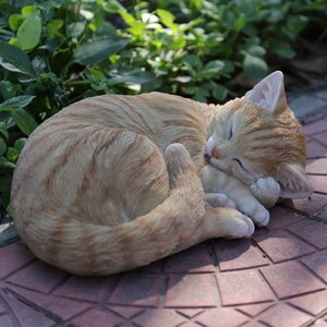 Orange Tabby Cat Lying and Sleeping Statue
