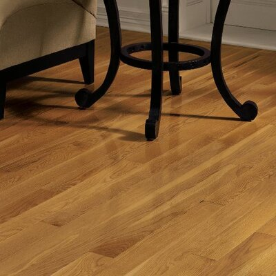 """Dundee 3-1/4"""" Solid Oak Hardwood Flooring Bruce Flooring Finish: Butterscotch"""