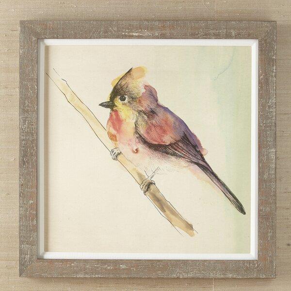 Set Of Framed Bird Prints | Wayfair