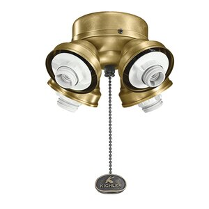 Turtle 4-Light Branched Ceiling Fan Light Kit