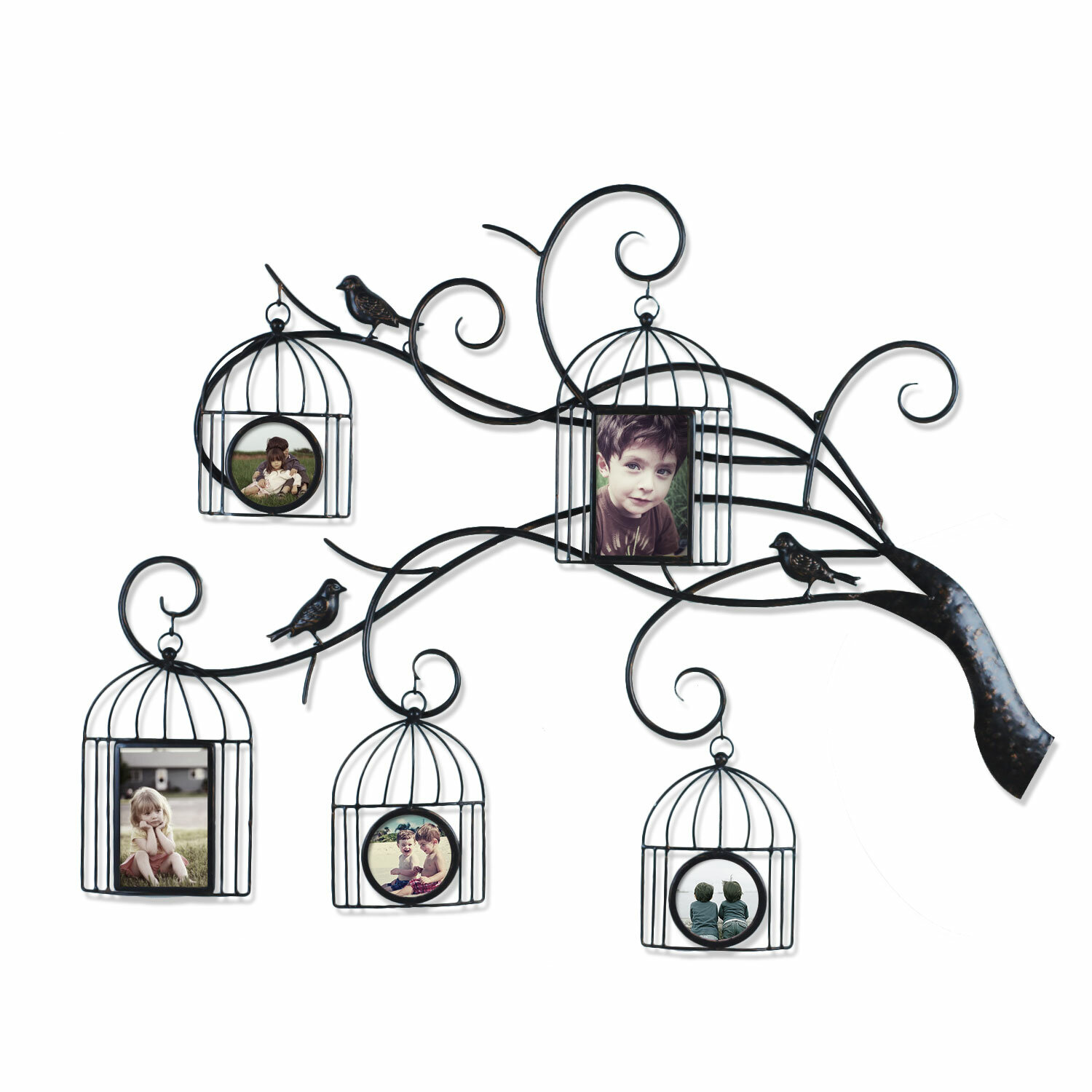 round picture frames you ll love wayfair 25 X 30 Poster Frame collage wall hanging 5 opening family tree scroll picture frame