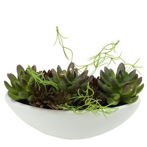 Marvelous Artificial Mixed And Succulent Desk Top Plant In A Pot