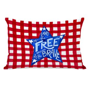 6ce825c70b32 Independence Day Lumbar Pillows You ll Love
