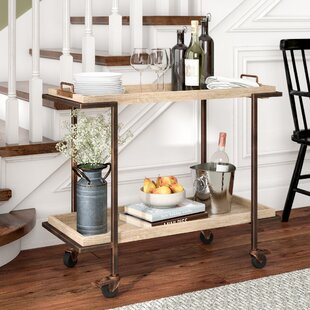 Hailee Bar Cart Wonderful