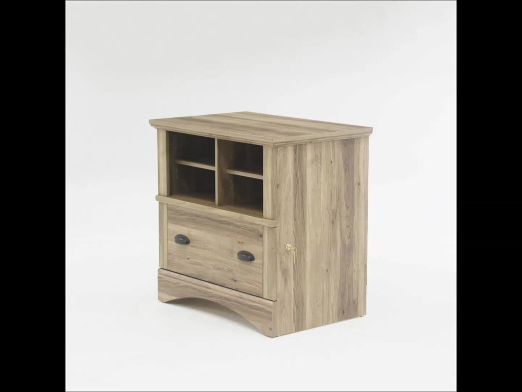 Pinellas  Drawer File Cabinet
