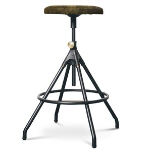 Dhrub Adjustable Height Bar Stool by 17 S..
