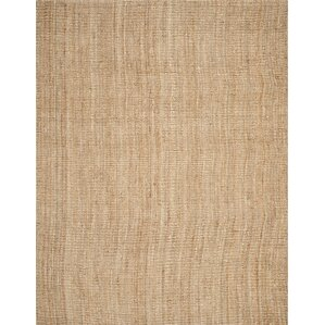 Gaines Hand Woven Brown Area Rug