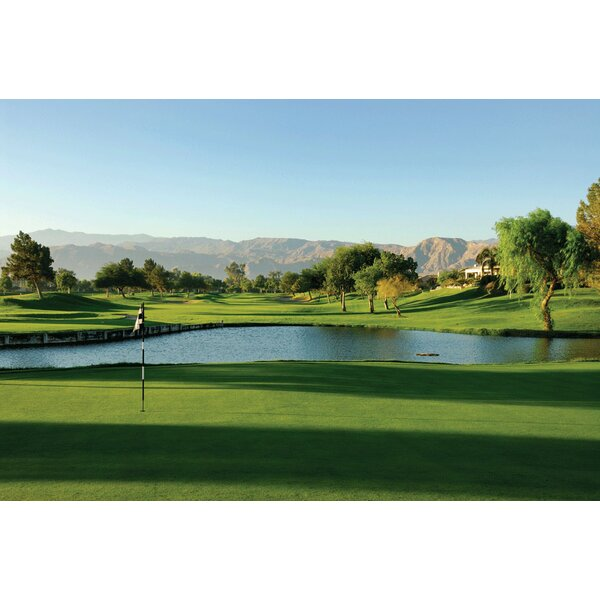 Wallhogs Palm Springs Golf Course Wall Mural Wayfair